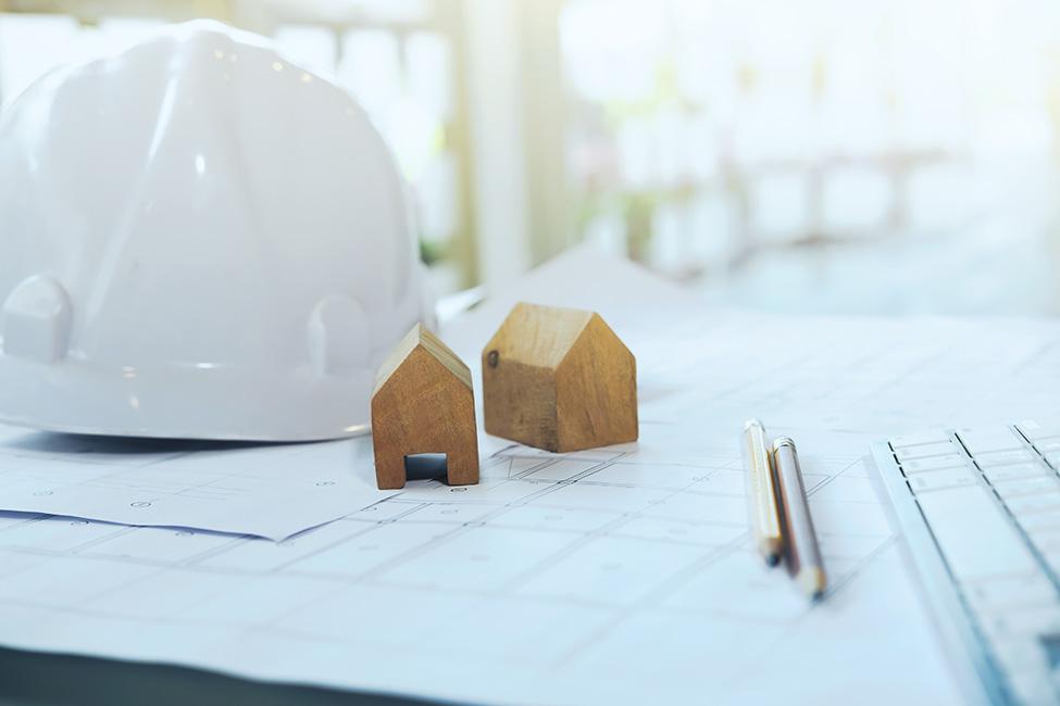 Inspeções de imóveis, Property Surveys